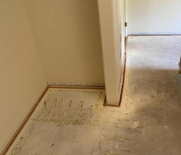 The same bedroom in Sedona, Arizona, after we removed the damaged carpet and completed the drying process